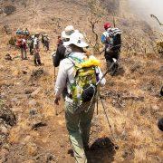 Machame Route Mount Kilimanjaro