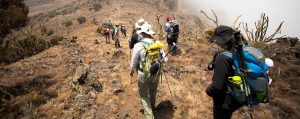 Machame Route Mount Kilimanjaro