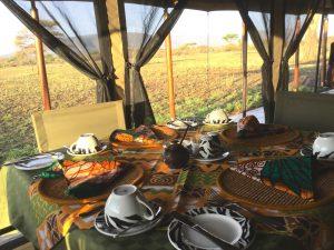 10 day safari Tanzania tented camp