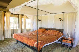Lodged safari 10 days Tanzania