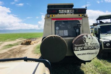 Serengeti Zanzibar tour