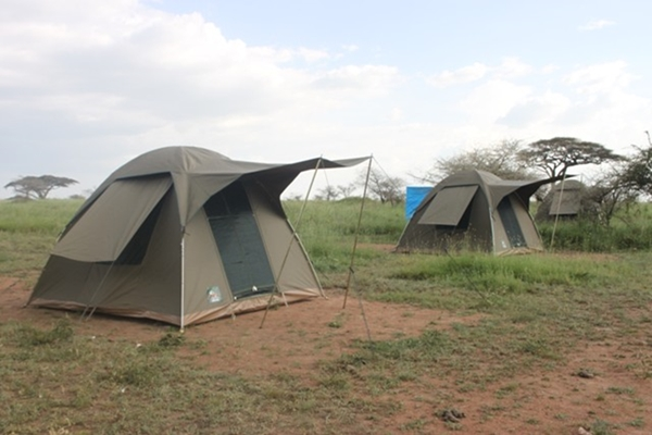 Tanzania Camping Safari