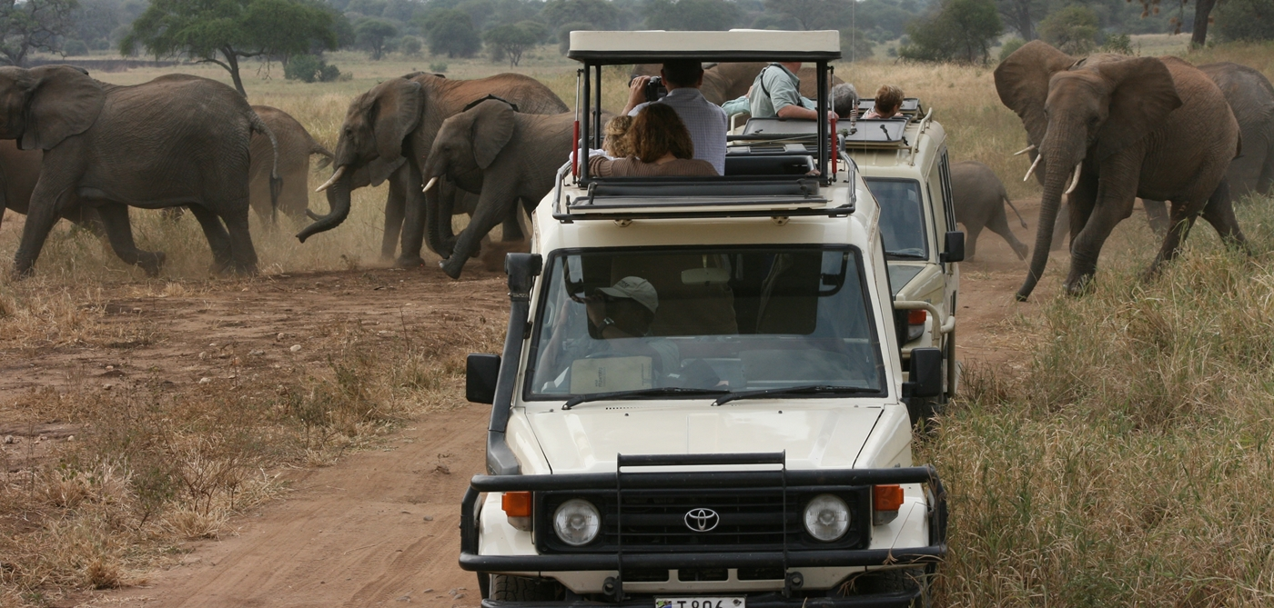 Tanzania Safari 4 days