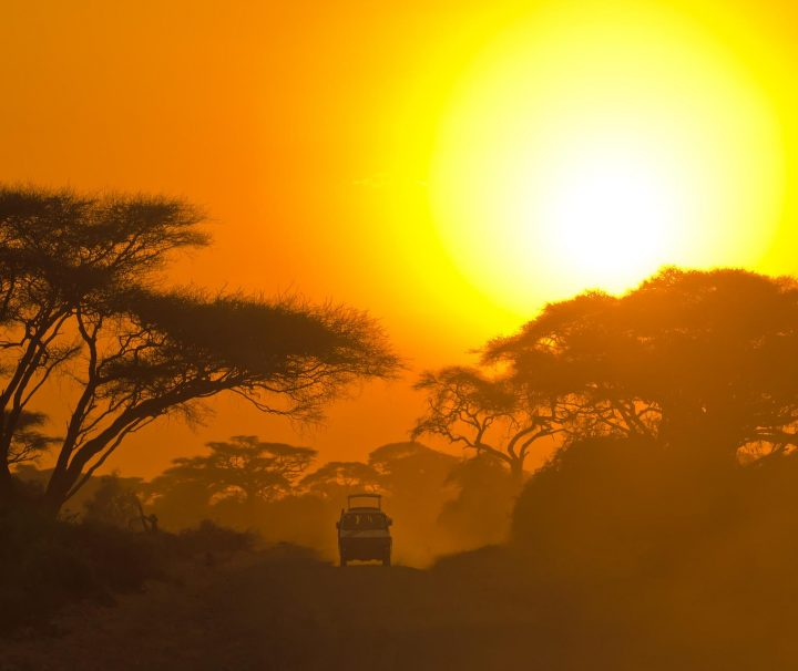 tanzania safari one week