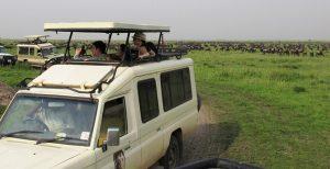 one week tanzania safari