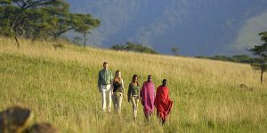 how to book safari tanzania