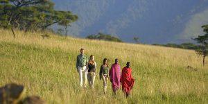 how to book safari tanzania