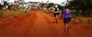 Day trip Tanzania