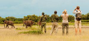 Tanzania Safari What to wear
