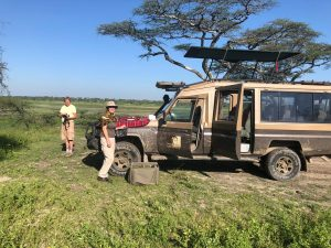 5 Days Tanzania safari lodge