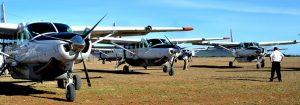 coastal flight serengeti