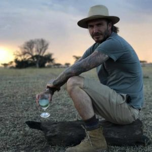 David Beckham on Safari in Africa