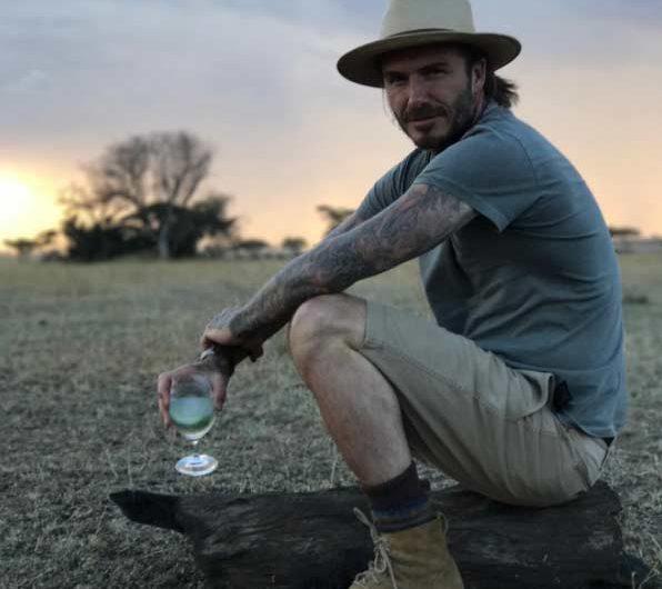 David Beckham on Safari in Africa