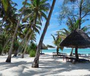 pongwe beach zanzibar