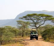 Game drives Tanzania