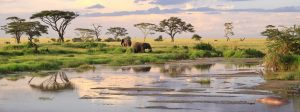 visiting Tanzania what to know