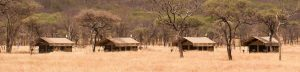 Serengeti Kati Kati Tented Camp Layout