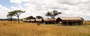 Serengeti Kati Kati Tented Camp