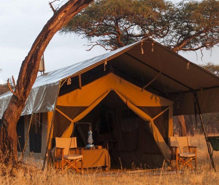 Serengeti Kati Kati Camp tents