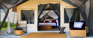 Serengeti Tortilis Camp, Tanzania