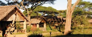 Ndutu Safari Lodge Rooms