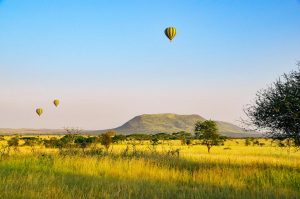 Tanzania Safari Serengeti Tour