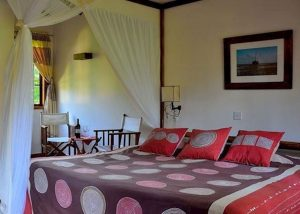 Arumeru river lodge double room