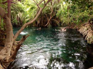 Kikuletwa Hot Springs Tanzania