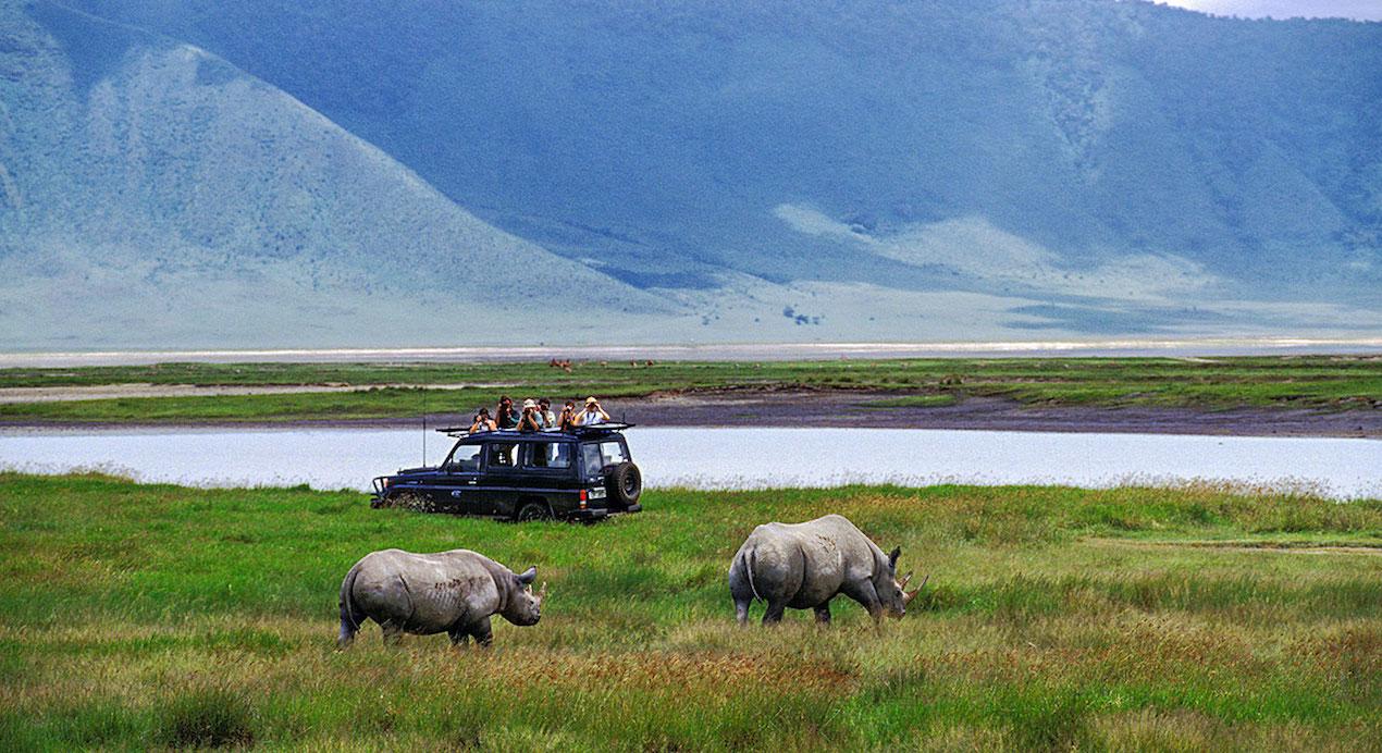 3 day safari Tanzania from Zanzibar beach