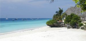 The best beaches of Zanzibar