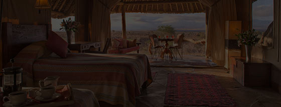 serengeti tortillis camp