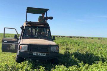 4 Days Tanzania safari from Zanzibar