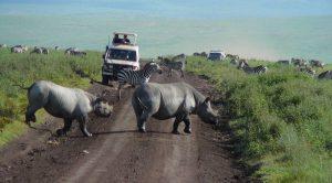 10 days Tanzania safari Ngorongoro