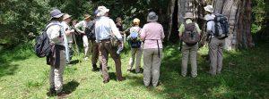 walking safaris Tanzania