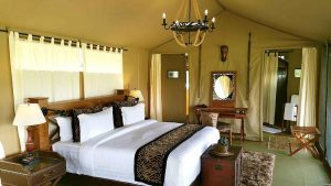Luxury Tented safari Tanzania