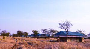 Osinon Serengeti Camp accommodation